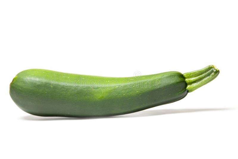 zucchini royaltyfri bild