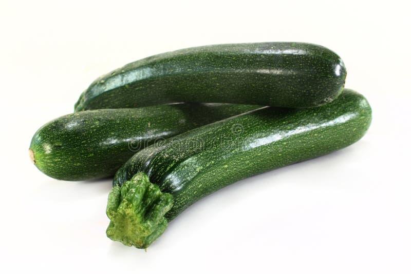 zucchini стоковые изображения