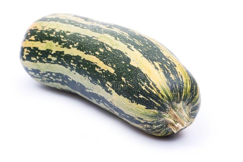 Download Zucchini immagine stock. Immagine di verdure, raccolta - 3140917