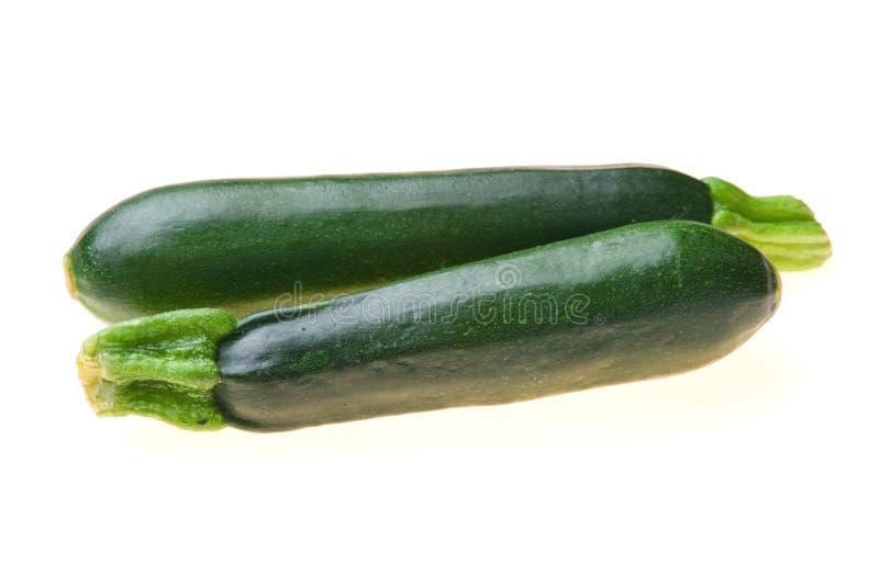 Zucchini stock image