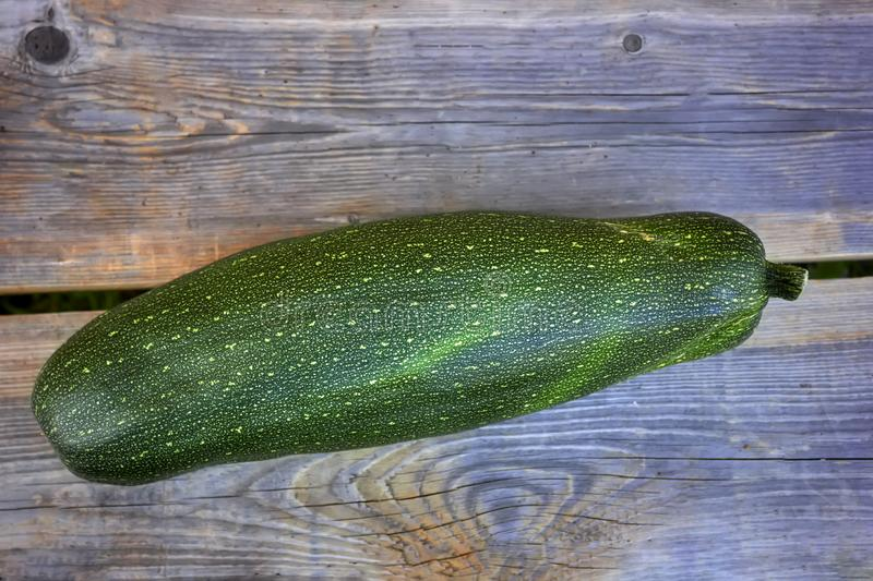 Zucchini on the background of old wooden boards close-up. royalty free stock images
