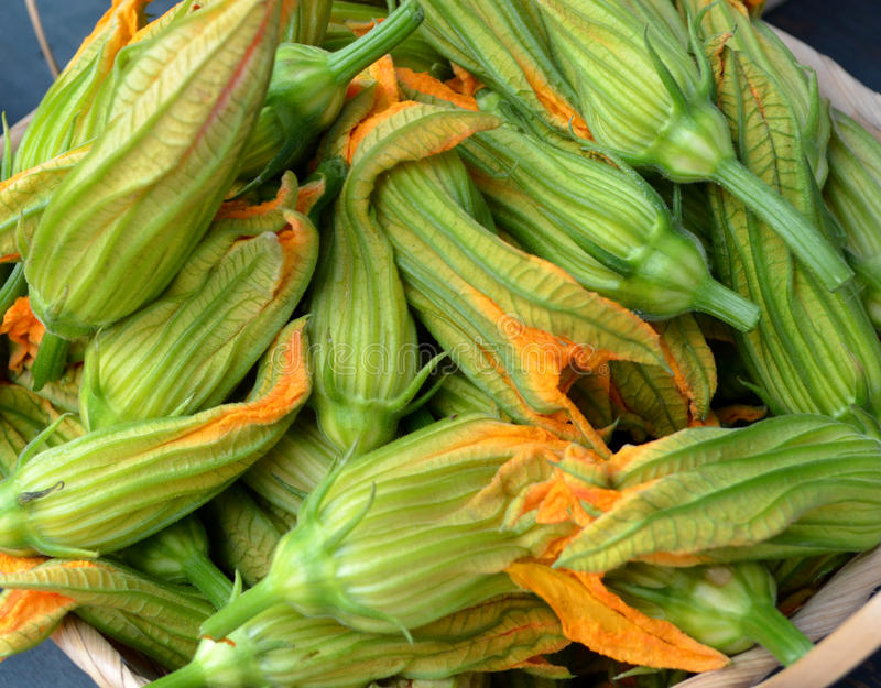 Download Zucchini Blossoms stock image. Image of stems, gourmet - 26627905