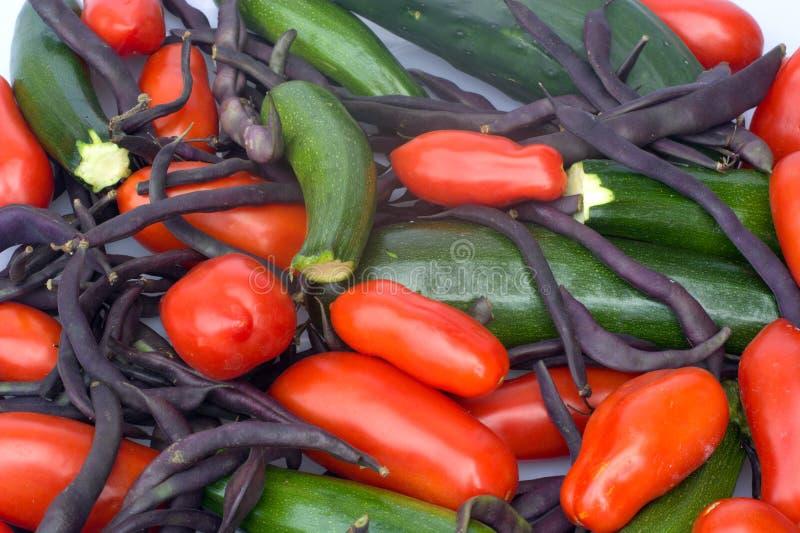 Zucchini e fagioli organici fotografia stock libera da diritti