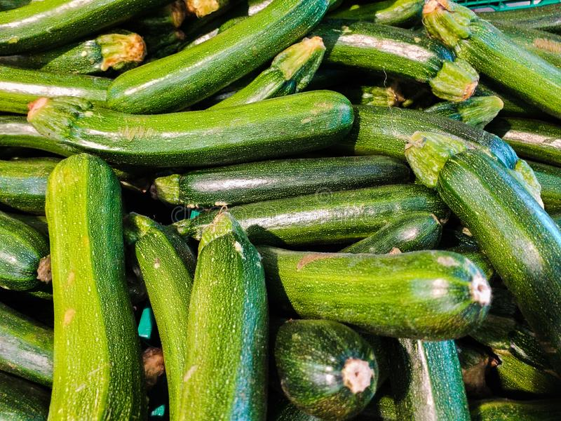 Zucchini It is a monoecious plant, that is, a plant that produces unisexual flowers, one male and one female, but carried by the s. Ame plant. The male flower stock images