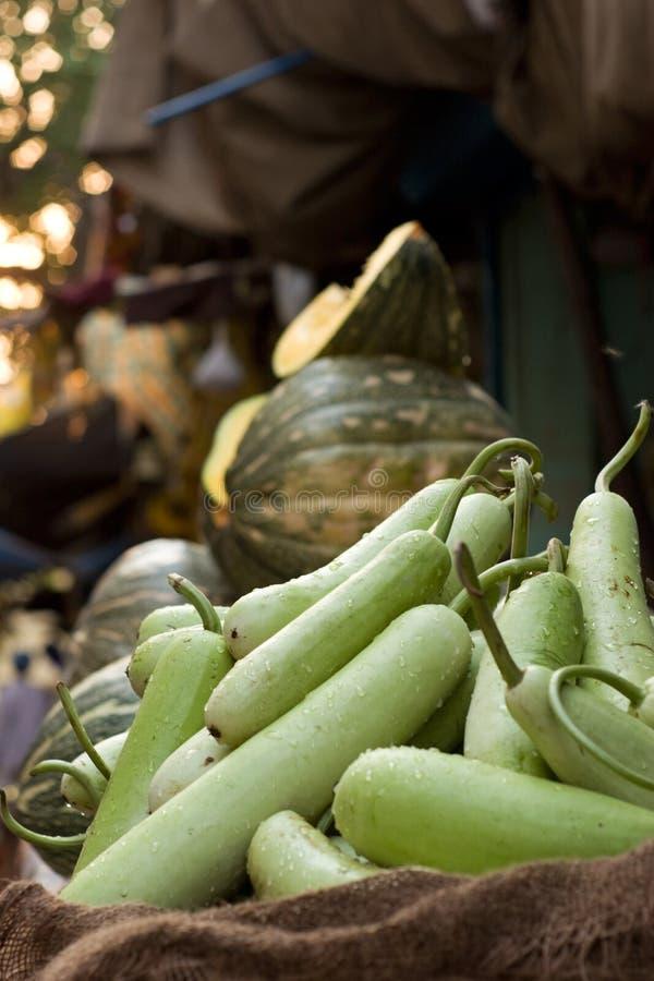 Zucchini nel servizio immagini stock libere da diritti