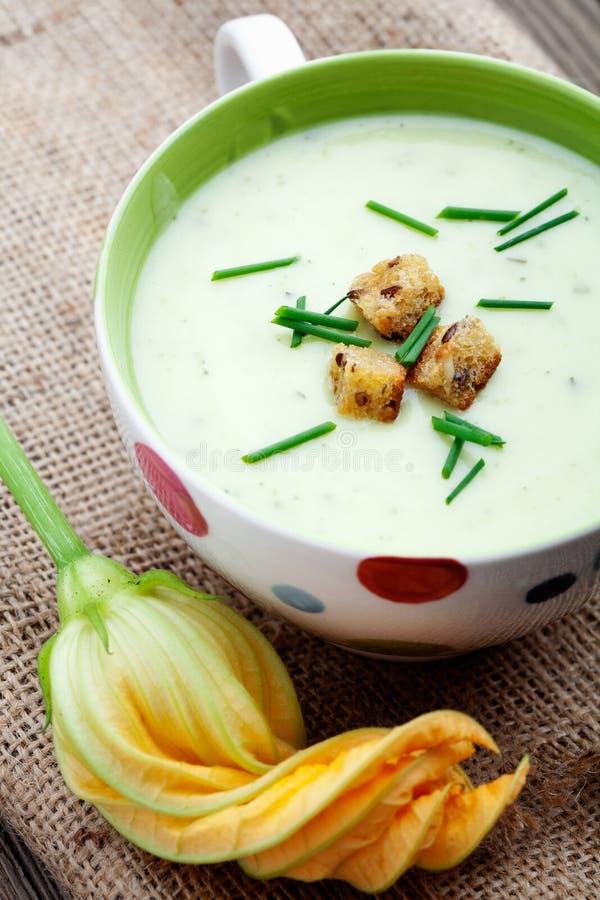 Zucchini soup stock photos