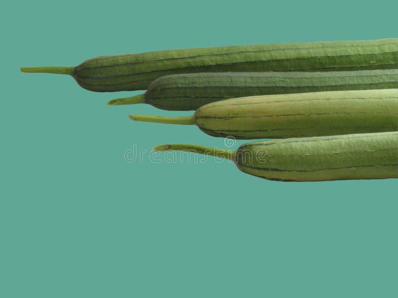 Zucchiniformatet är ordnat vid längd arkivbild