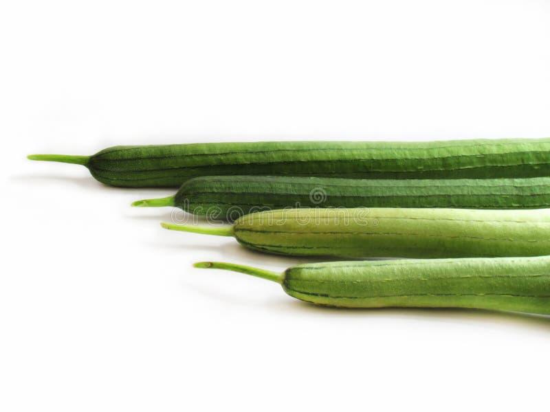 Zucchiniformatet är ordnat vid längd royaltyfri foto