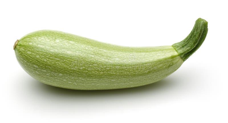 Zucchinigemüse lizenzfreies stockfoto