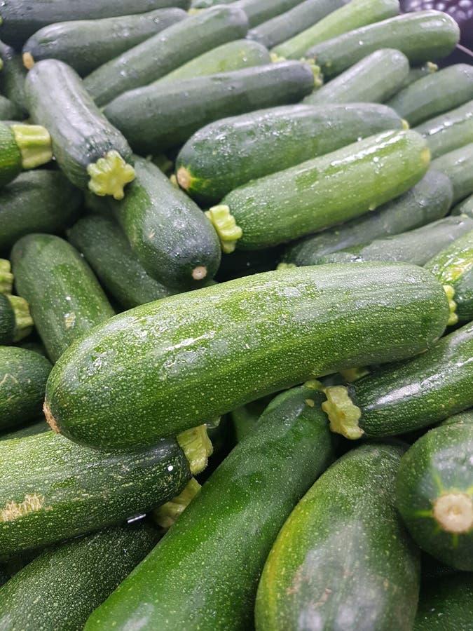 Zucchinihintergrund lizenzfreie stockfotografie