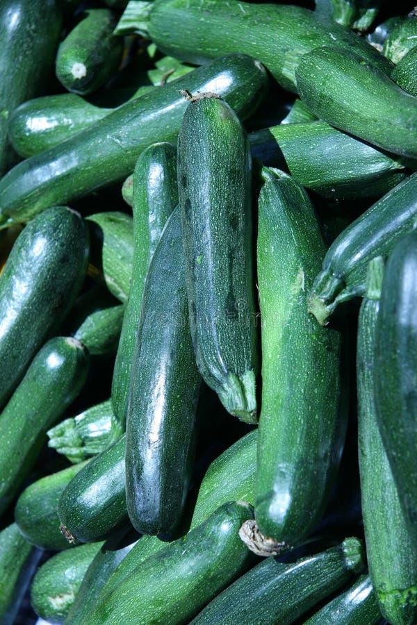 Zucchinis verdes fotografia de stock