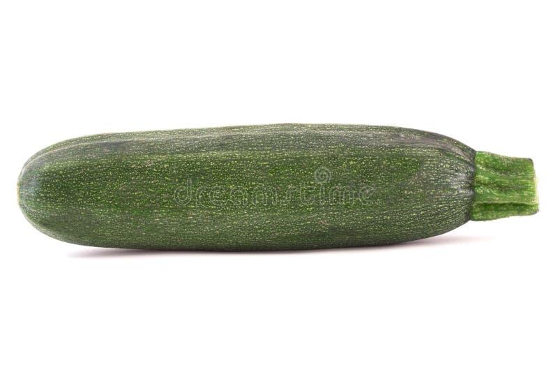 Zucchino fotografia stock libera da diritti