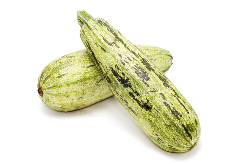 Zucchino due fotografia stock
