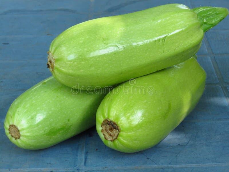 Zucchino/midolli verdi vibranti organici freschi su fondo blu fotografia stock libera da diritti