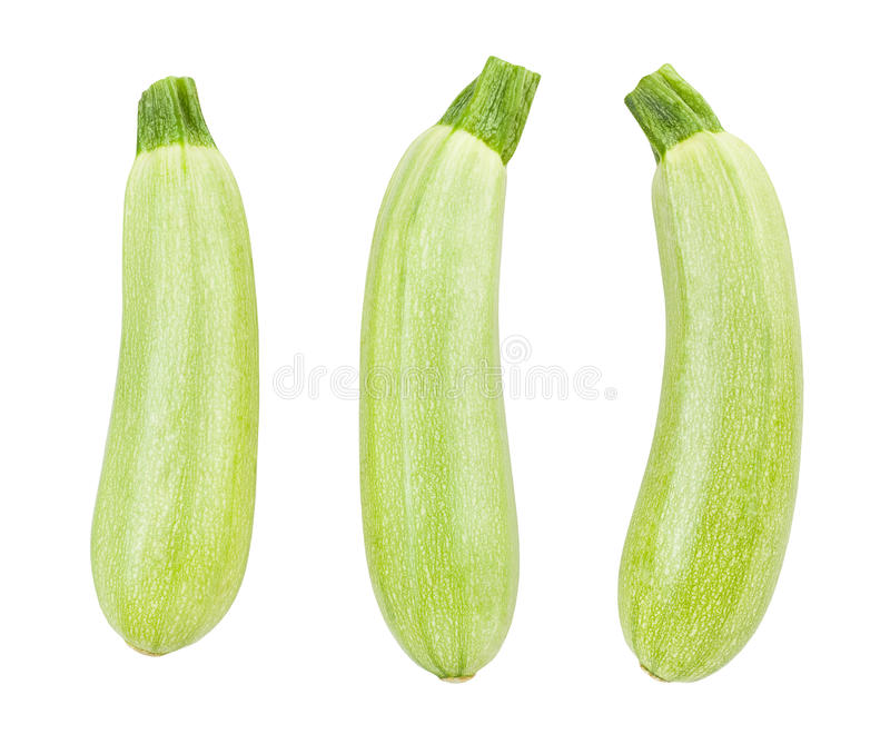 Zucchino verde fotografia stock