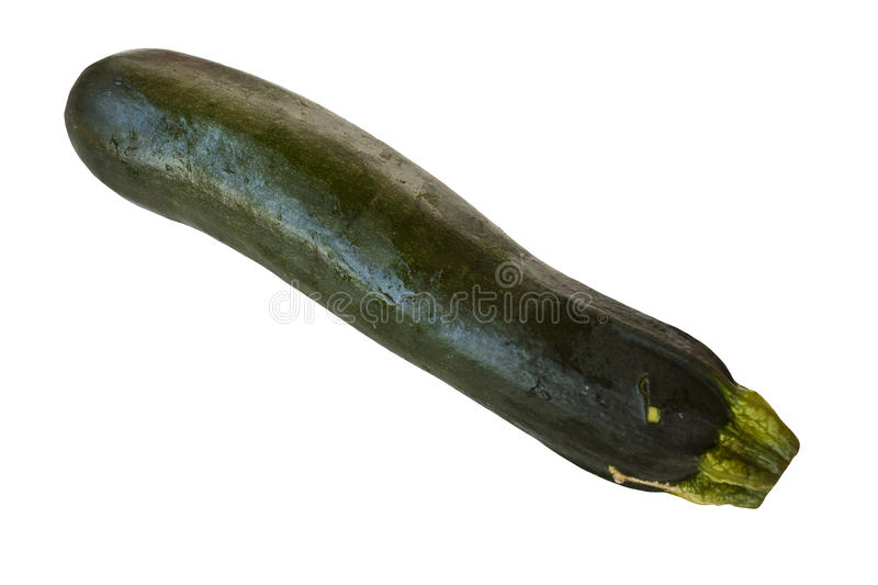 Zuchini isolated. On a white background royalty free stock image