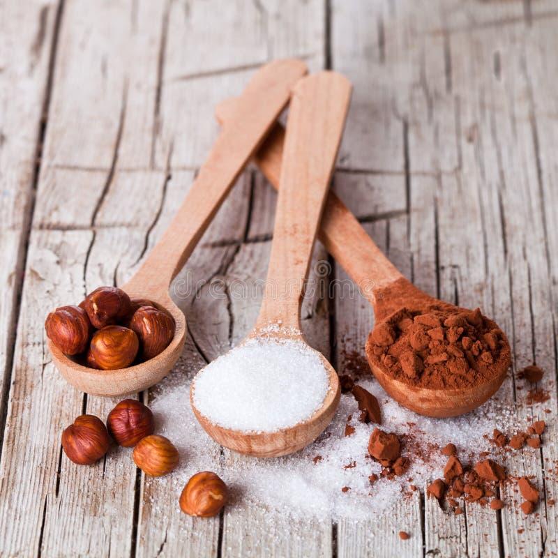 Zucker, Haselnüsse und Kakaopulver in den Löffeln lizenzfreie stockfotos