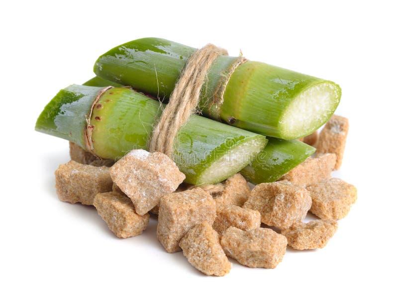 Zuckerrohr und brauner Zucker Getrennt auf weißem Hintergrund stockfotografie