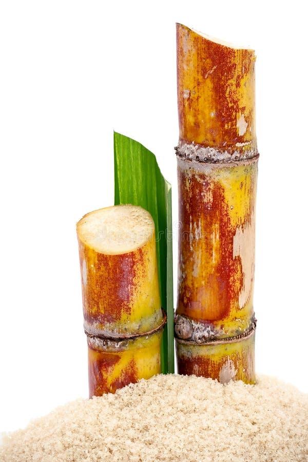 Zuckerrohr und Zucker stockfotos