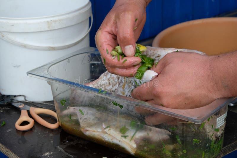 Zuerst sollten die Fische die Marinade tränken stockbilder