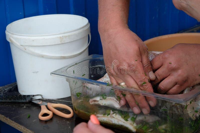 Zuerst sollten die Fische die Marinade tränken lizenzfreie stockbilder