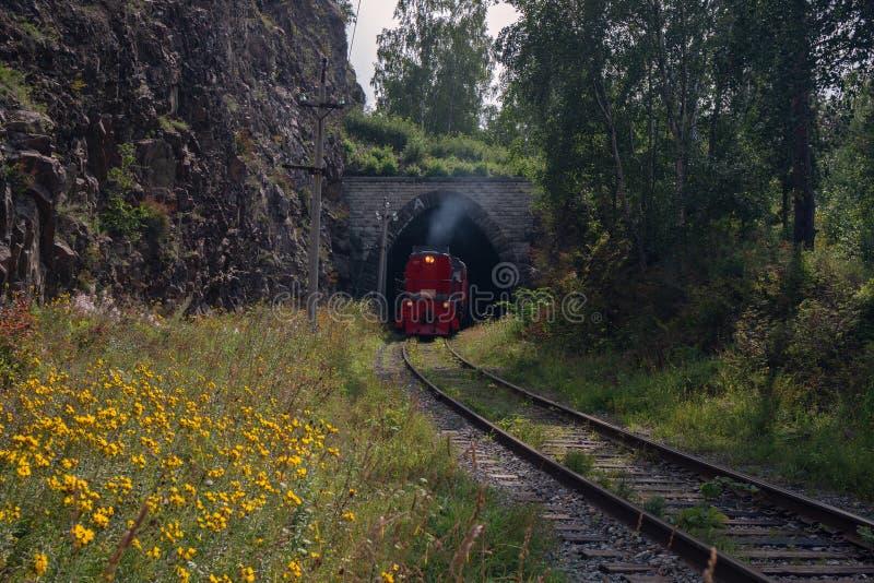 Zug auf der Circum-Baikal-Bahn lizenzfreies stockbild
