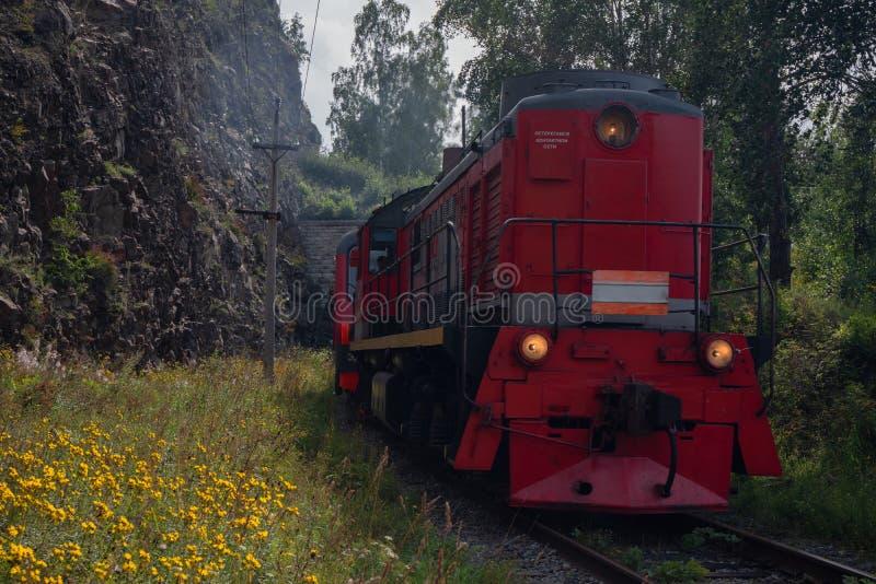 Zug auf der Circum-Baikal-Bahn lizenzfreie stockbilder