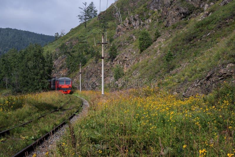 Zug auf der Circum-Baikal-Bahn stockbilder