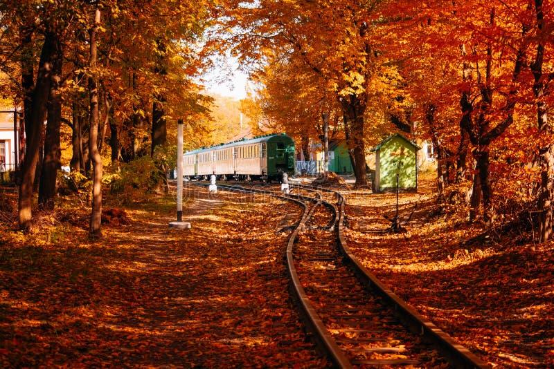 Zug auf Herbstwald lizenzfreies stockfoto