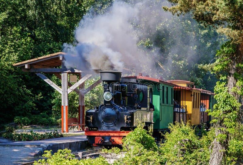 Zug fährt hinunter den Park lizenzfreie stockfotos