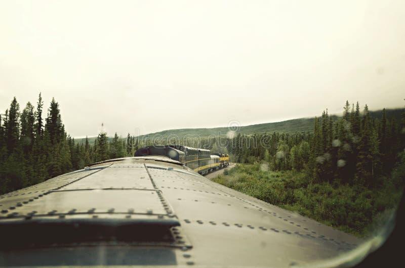 Zug-Fahrt durch den Wald lizenzfreie stockfotografie