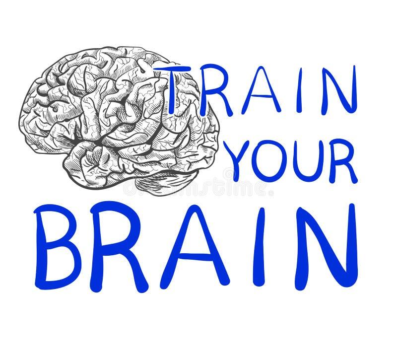 ` Zug Ihr Gehirn ` Text mit Hand gezeichneter Gehirnskizze VEKTOR-Illustration, blaue handgeschriebene Buchstaben vektor abbildung