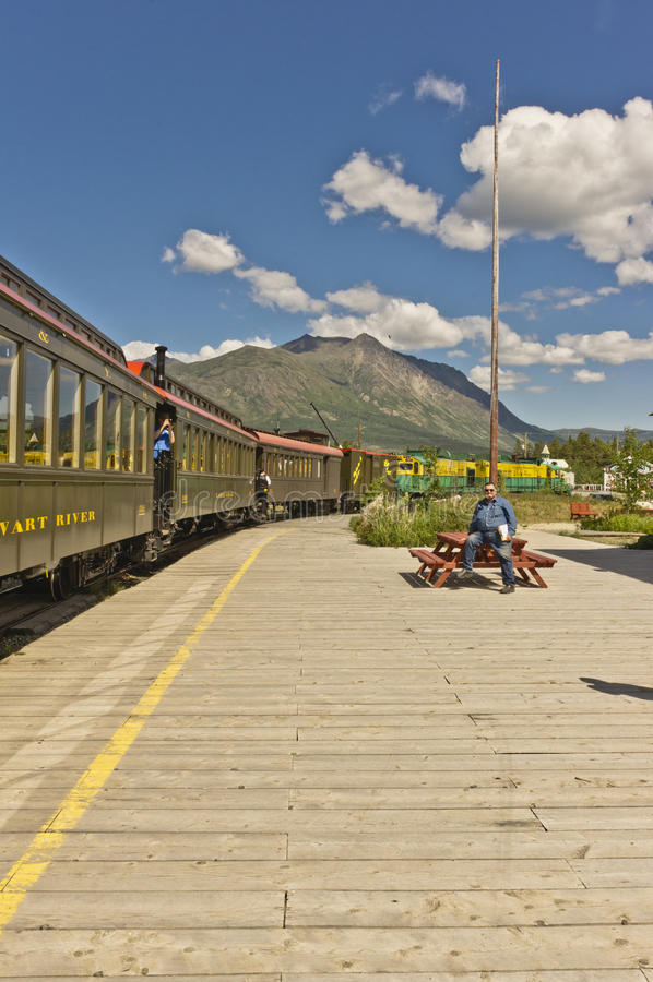 Zug und Passagiere stockbild