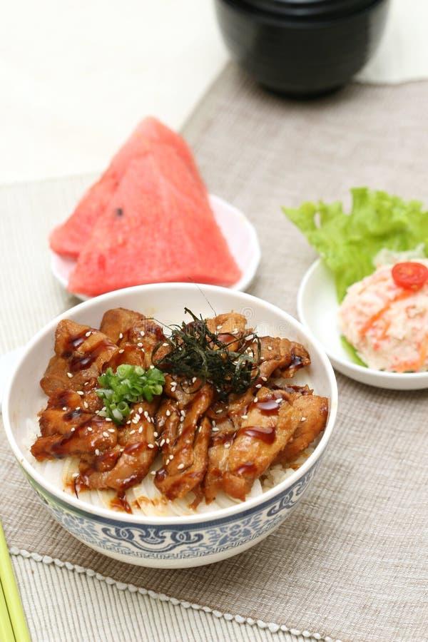 Zugebereiteter und köstlicher japanischer Nahrungrindfleisch Reis stockfotografie