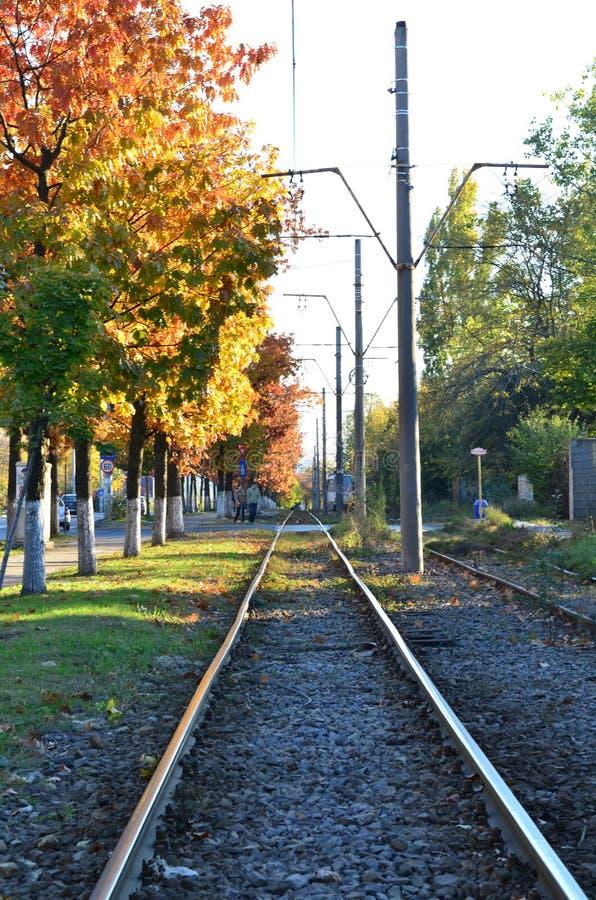 Zugschienen im Herbst stockfotografie