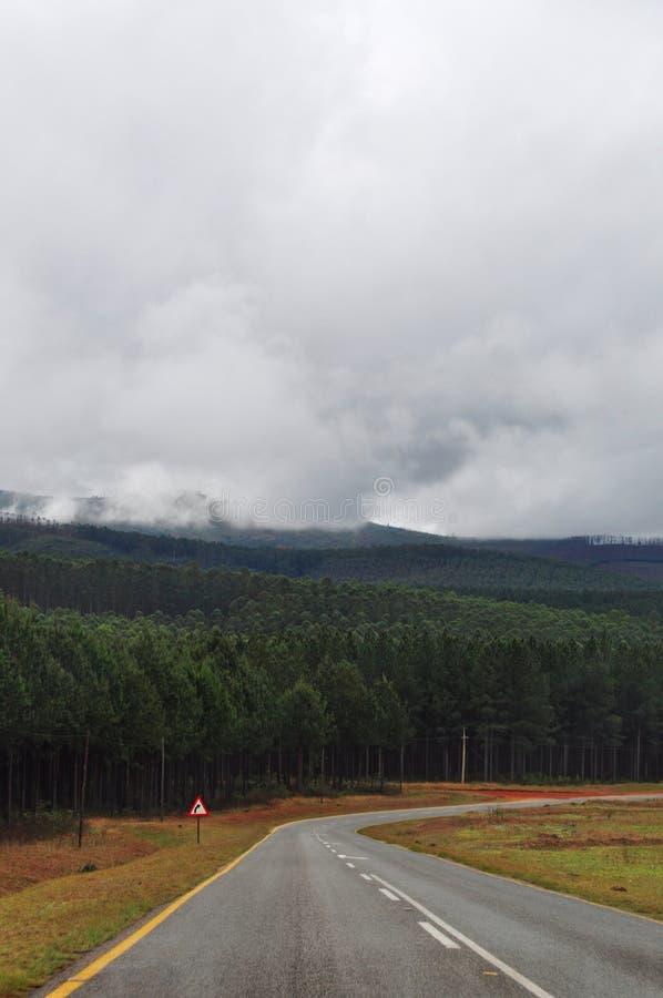 Zuid-Afrika, het Oosten, Mpumalanga-provincie royalty-vrije stock fotografie