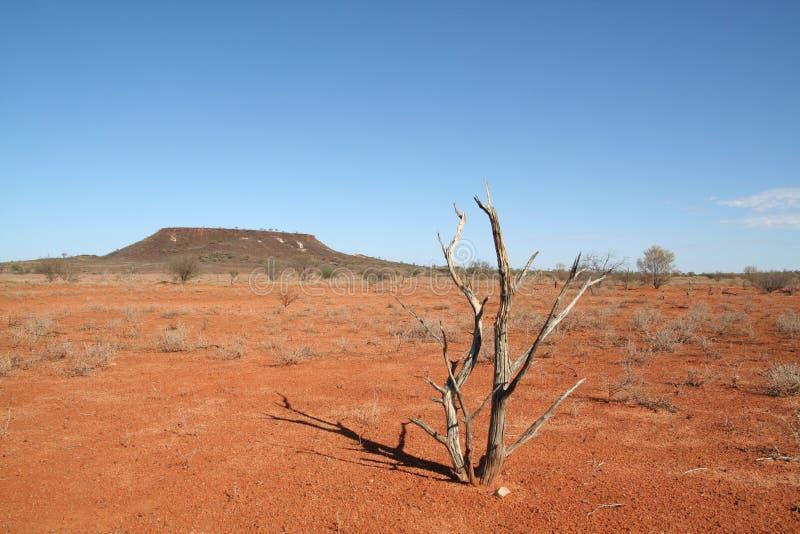 Zuid- Australië stock afbeelding