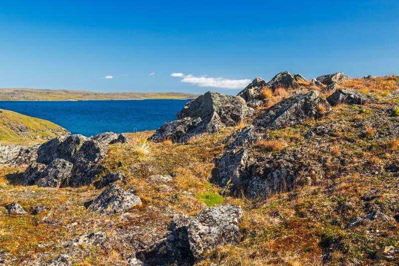 Zuidelijke kust van Novaya Zemlya stock afbeeldingen
