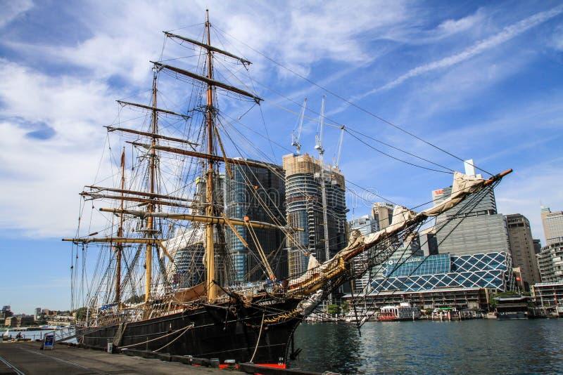 Zuidelijke Zwaan op een glorierijke dag, de haven Sydney, Nieuw Zuid-Wales, Australië van Sydney stock afbeeldingen