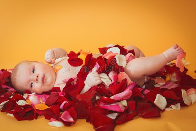 Zuigelingsmeisje die op bloemblaadje van rode en roze rozen liggen royalty-vrije stock fotografie