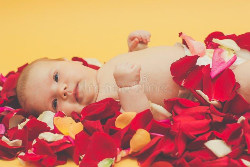 Zuigelingsmeisje die op bloemblaadje van rode en roze rozen liggen stock foto's