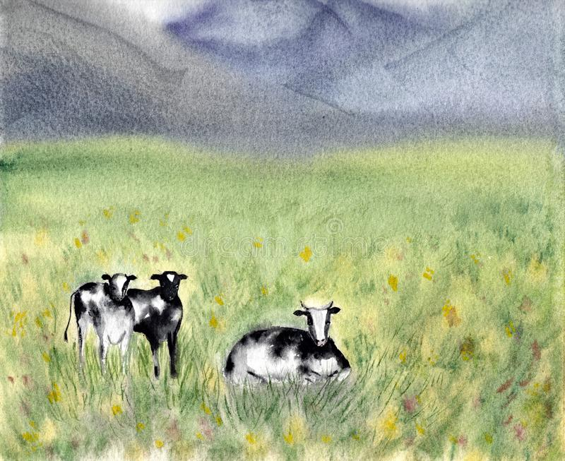 Zuivel het Weiden Fries rund zwart-witte koeien op een grasrijk gebied De zomer landelijke scène Alpiene achtergrond watercolor vector illustratie