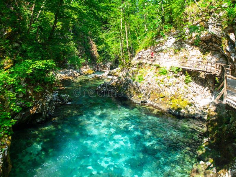 Zuiver blauw water van Radovna-rivier in Vintgar-Kloof Natuurlijke watervallen, pools en stroomversnelling en toeristen houten we royalty-vrije stock foto