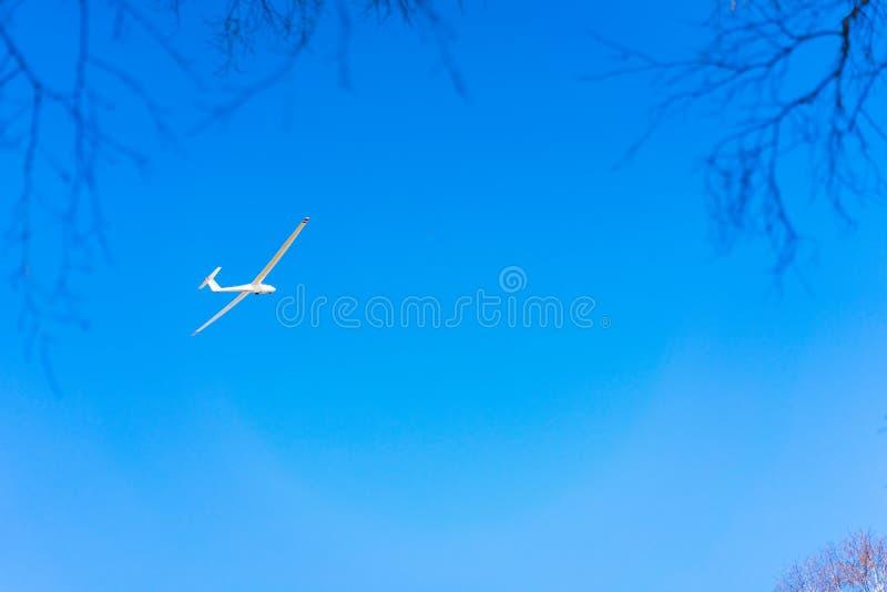 Zuiver wit Zweefvliegtuig in duidelijke blauwe hemel die over treetop vliegen Concept succes, voltooiing van hoog doel stock afbeeldingen