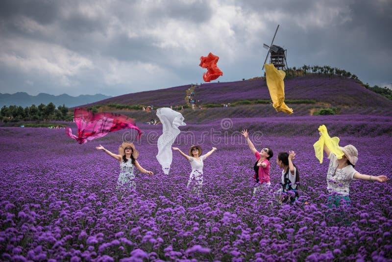 Zujubelnde Frauen im Lavendel-Freizeitpark lizenzfreie stockbilder