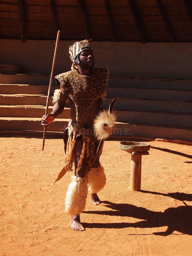 Zulu- man som visar krigaren April 18, 2014 Kwazulu Natal som är södra arkivfoto