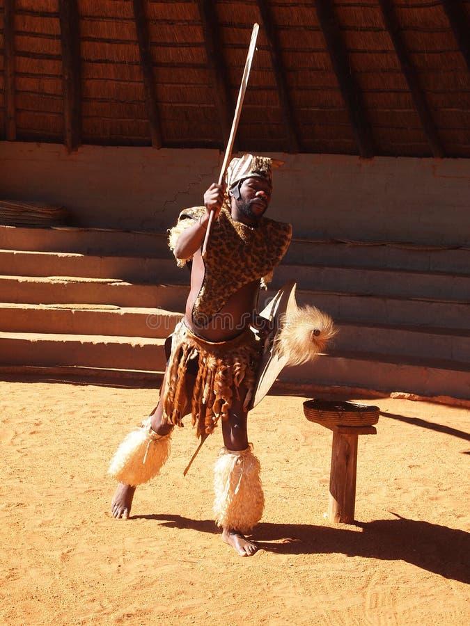 Zulu- man som visar krigaren April 18, 2014 Kwazulu Natal som är södra royaltyfri foto