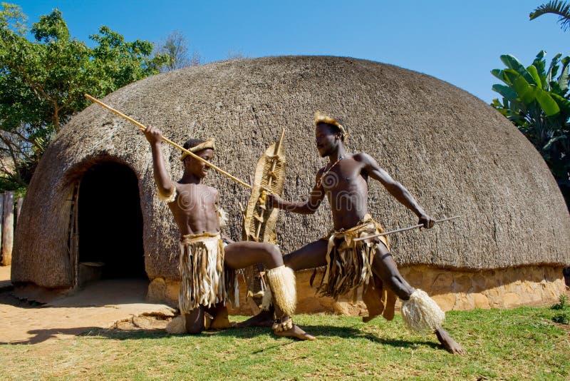 Zulu warriors royalty free stock image