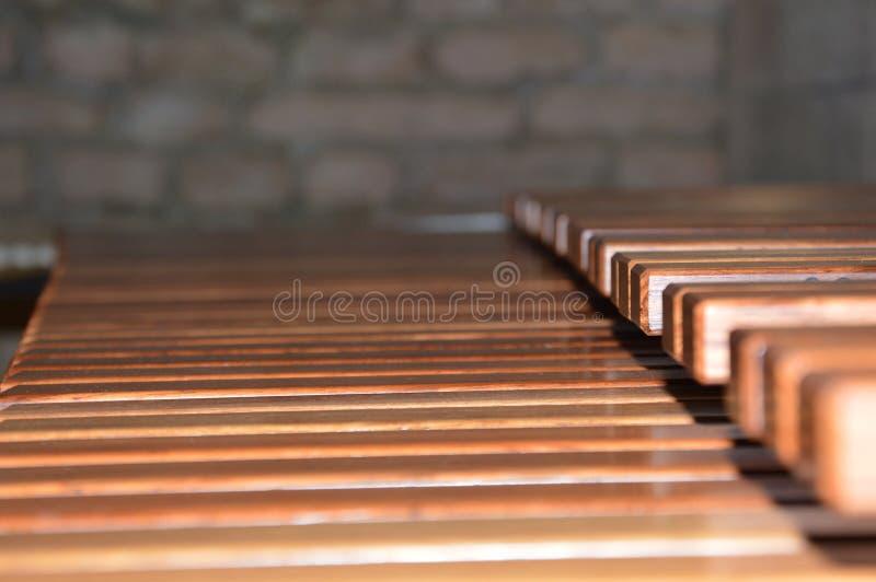 Zumbido em um xilofone fotos de stock royalty free