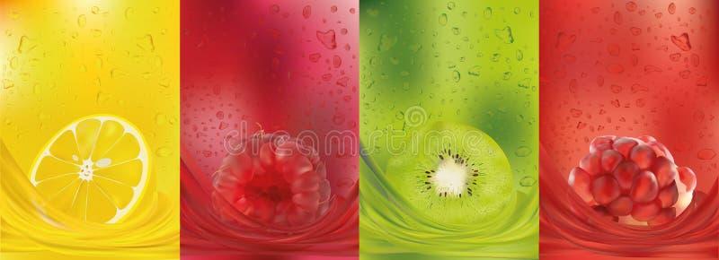Zumo de fruta, limón, frambuesa, kiwi, granada frutas frescas 3d La fruta salpica cercano para arriba Ilustraci?n del vector ilustración del vector